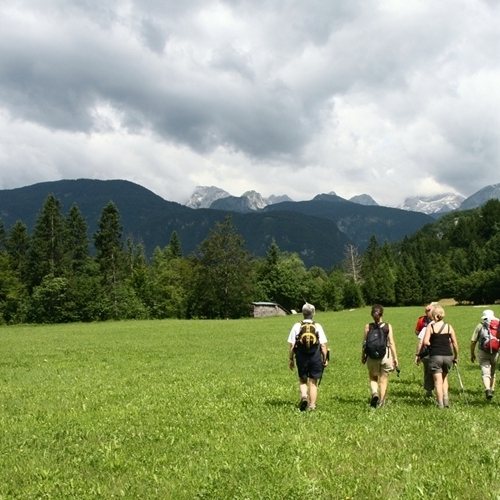 Guided walking in Slovenia-Slovenia - an alpine meadow stroll