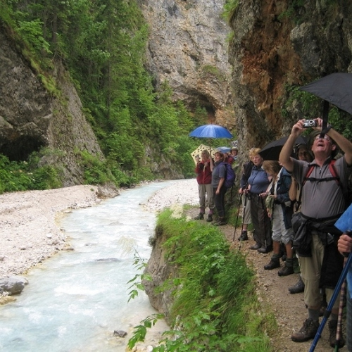 Guided walking in Slovenia- Slovenia - Vintgar Gorge